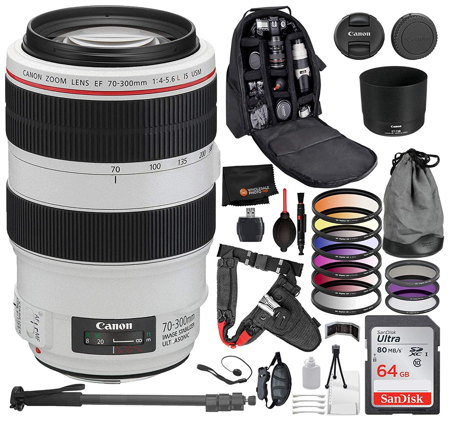 Canon EF 70-300mm f/4-5.6L IS
